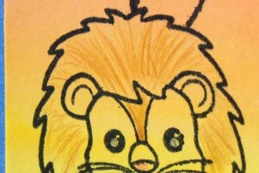 lion_3